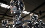 Robot Endoskeleton 2