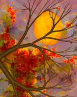 Harvest Moon  by Shadoweddancer