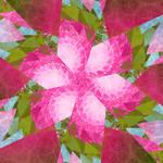 A Flower for Anna by Shadoweddancer