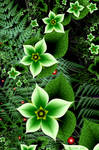 Green Flora On the Forest Floor by Shadoweddancer