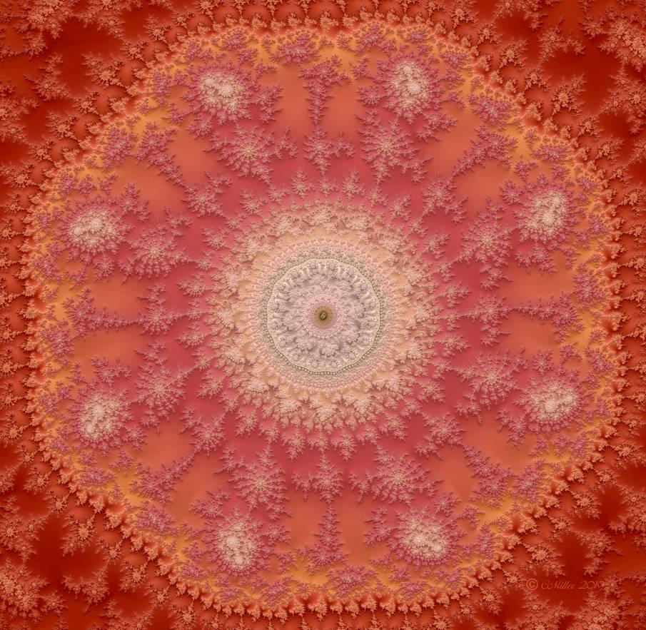 Pink Lace by Shadoweddancer