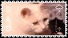 {stamp} #6