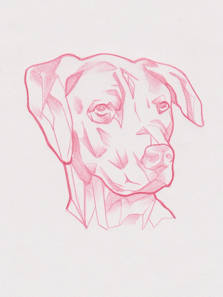 Geometric dog sketch. by ArtOfTypH