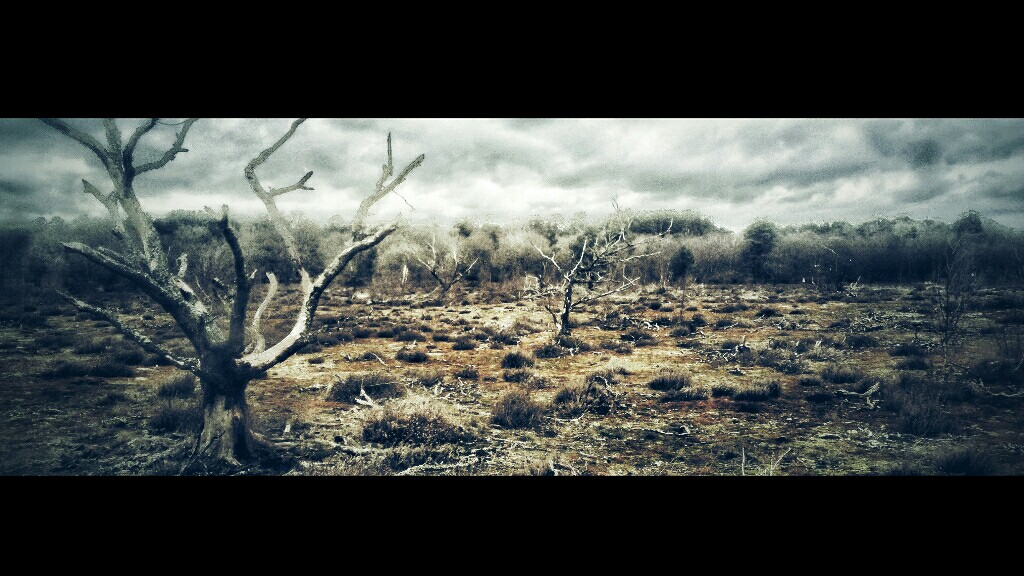 Wasteland by Isolated-Spirit