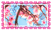 Cherry blossoms stamp f2u by V-ibes