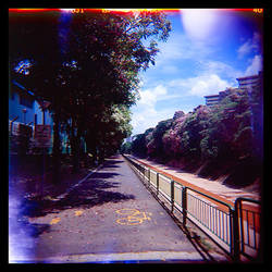 Holga Blues 04 by lomolurgee