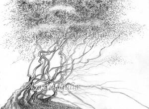 Mystic Tree 09