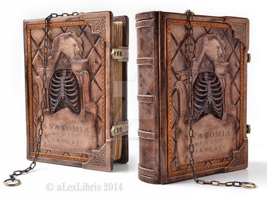 Anatomia Humani Corporis, 11 x 8 inches by alexlibris999