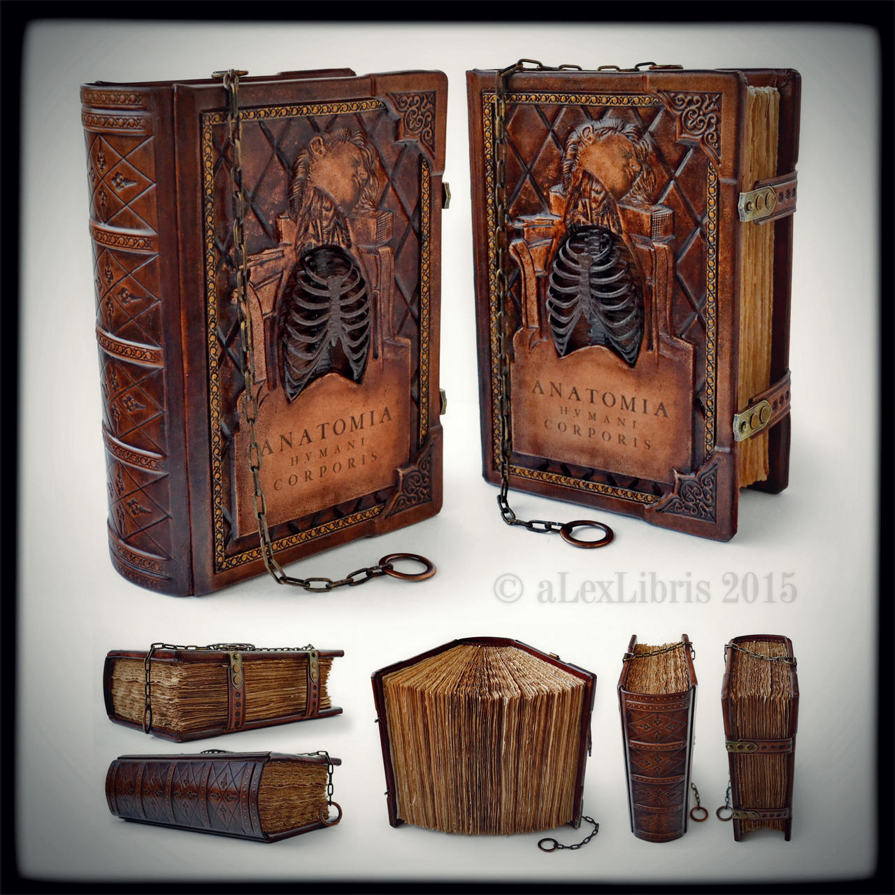 Anatomia sketchbook... July 2015