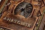 Anatomia... by alexlibris999