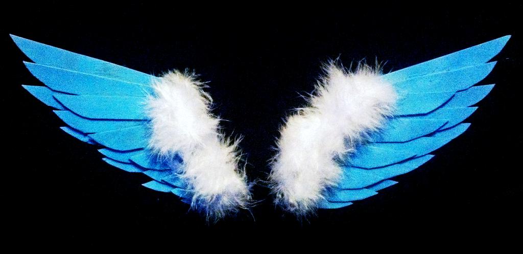 Wooden Angel Wings by Ankoku-Sensei