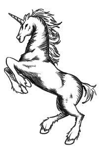 Unicorn PNG by Ankoku-Sensei