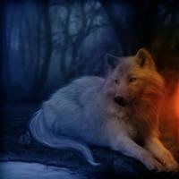 Lone Wolf by LucasValencio