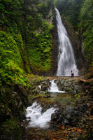 Cascade of Joy by da-phil