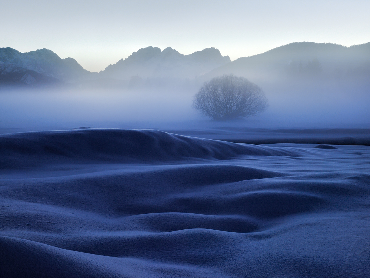Cloaked in Mist by da-phil