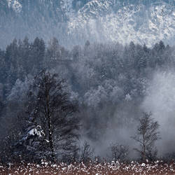 Wall of Frost by da-phil