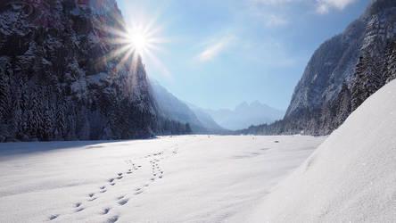 Winterwalk by da-phil
