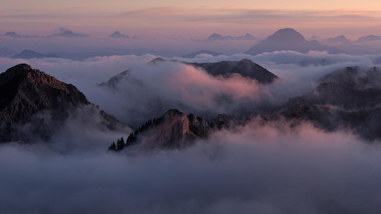 Fog Kingdom II