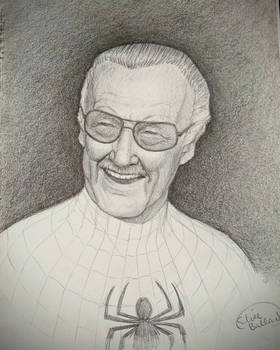 A True Believer, we'll miss you Stan Lee