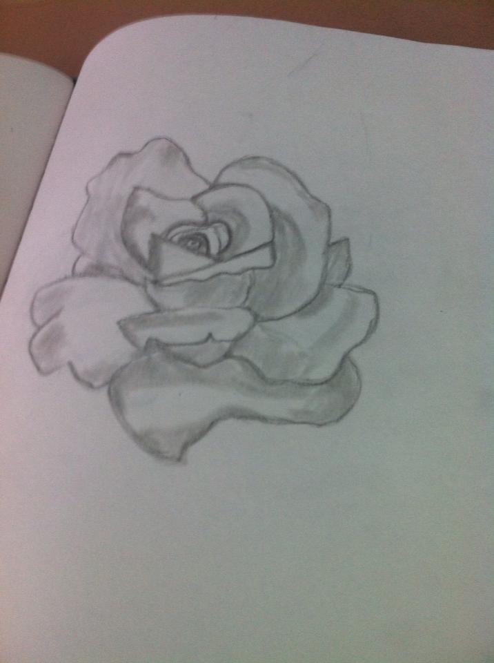 Shaded Rose by Bloodonmyhands25