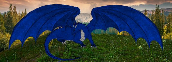 Aryn banner