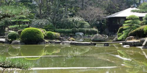Beautiful Pond by Lissou-photography