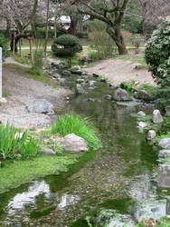 A Cute River Across Nijo Castle by Lissou-photography