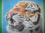 Pastel Tiger by avator