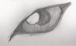 Wolf Eye Sketch by ravynkatt
