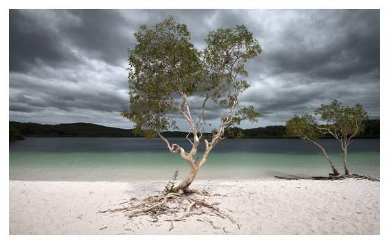 Storm at Lake McKenzie