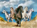 Dream Horses DAP deviant-dry poster