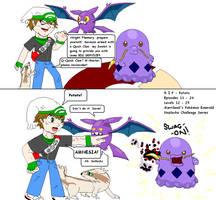 Marriland vs Flannery! - Emerald Nuzlocke by Xayez