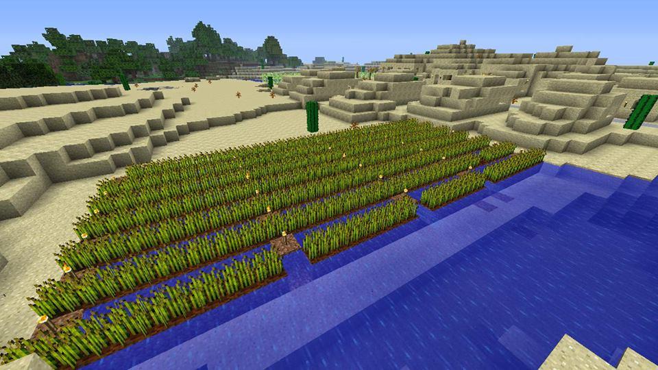 Minecraft Wheat Minecraft Wheat Farm by
