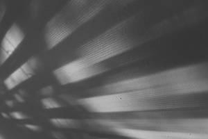 Light and Shadow 2 by MaboroshiTira