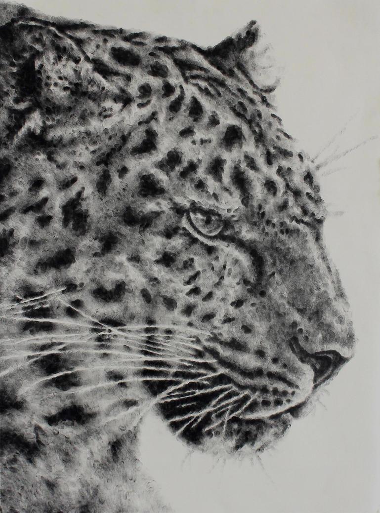 Amur Leopard by MaboroshiTira