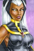 Storm Sketch Card '09 by Dangerous-Beauty778