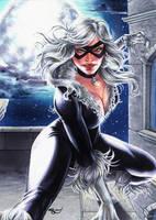 Black Cat, Dangerous Divas series 2 by Dangerous-Beauty778