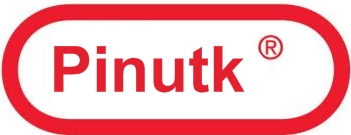 Pinutk Nintendo Logo by Pinutk