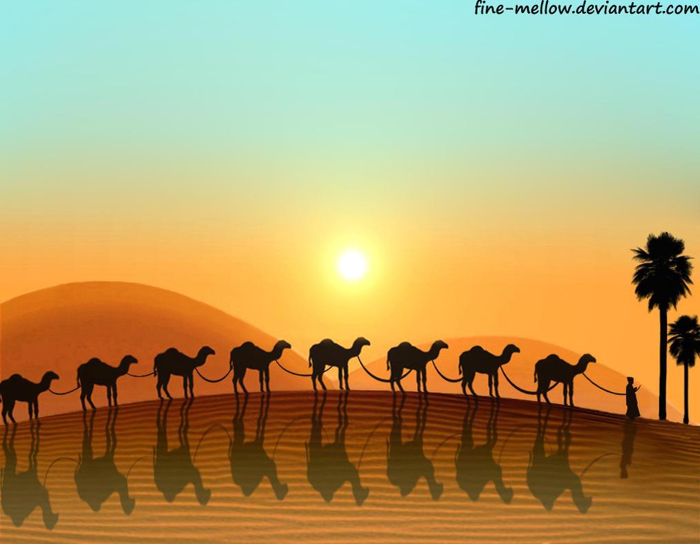 WallpapersWidecom  Desert HD Desktop Wallpapers for
