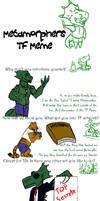 Metamorpher Transformation Meme Answers