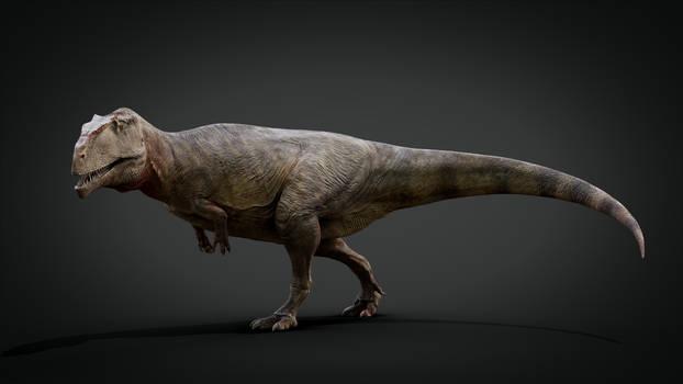 Giganotosaurus carolinii - 3D Model Paleoart