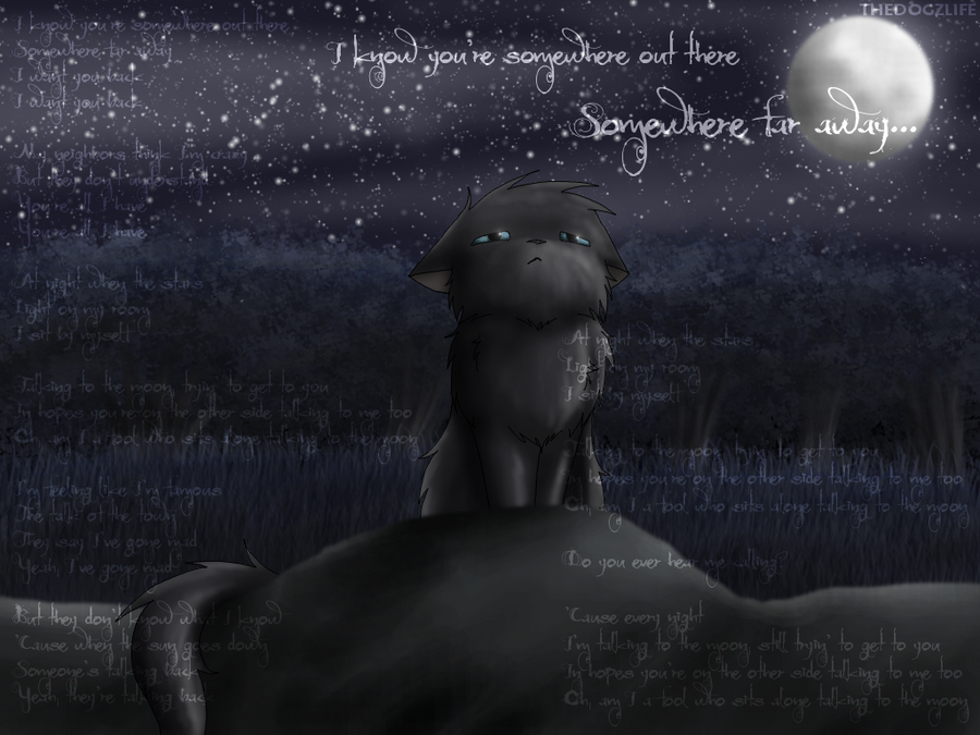 Talking To The Moon by TheDogzLife on DeviantArt