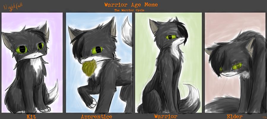 Nightfall Warrior Cats