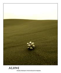 Alone by Kvaga