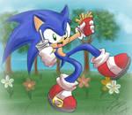 Sonic bigsteppin- Spring