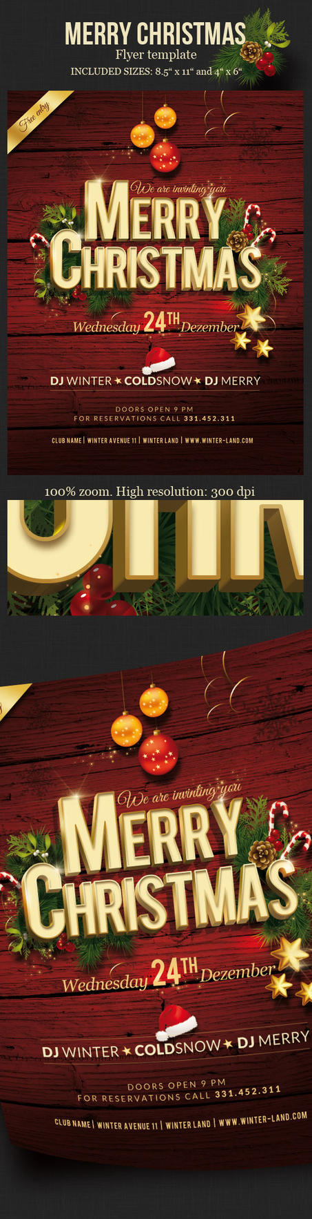 Christmas Party Flyer by imagearea
