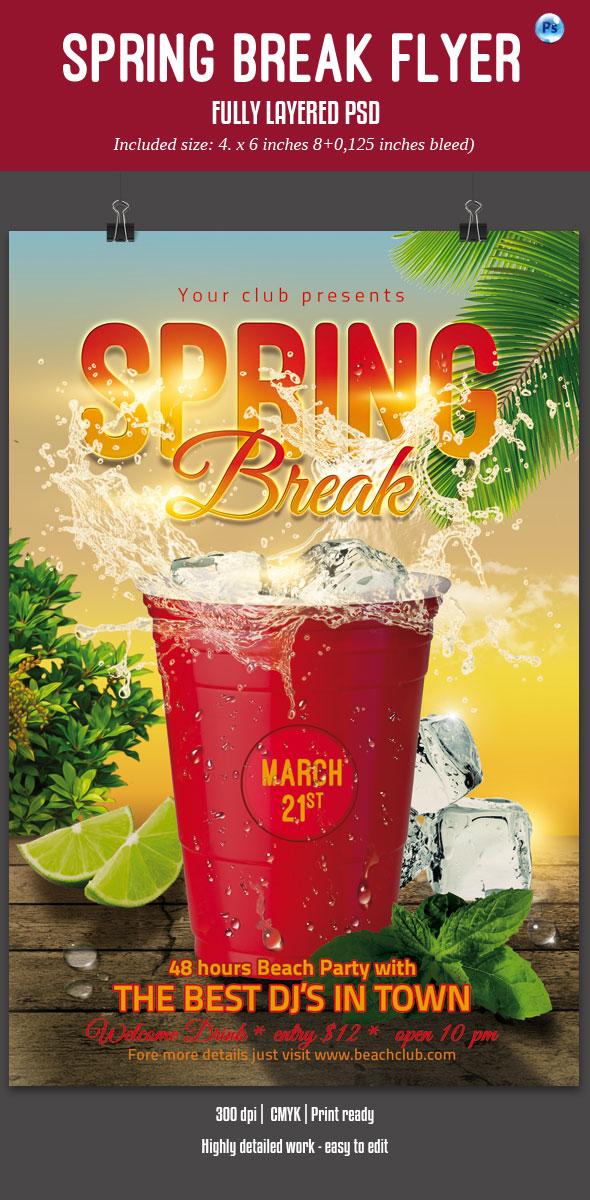 Spring Break Party Flyer by imagearea
