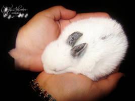 Love me... by Ady-MUM