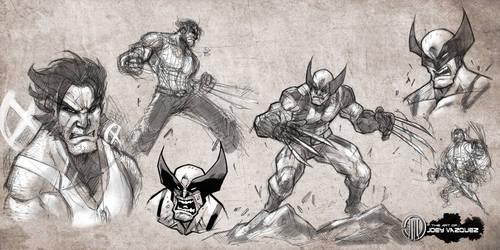 Wolverine sketches and studies by JoeyVazquez