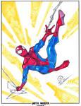 Spider-man swinging markers